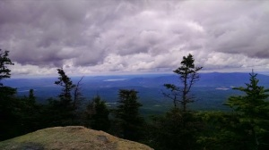 whiteface7