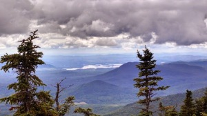 whiteface8