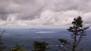 whiteface9