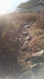 cliffwalk7